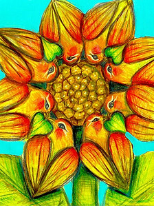 Lovebird Sunflower