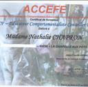 ECCF.jpg
