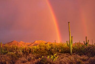 Desert Rainstorm3.jpg
