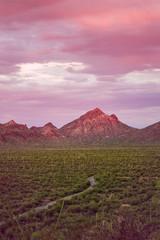 Saguaro Park West3.jpg