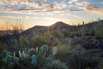 Kings Canyon13.jpg