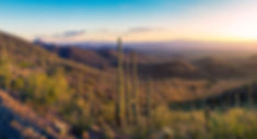 Kings Canyon2_small.jpg