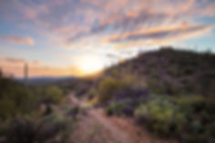 Kings Canyon11.jpg