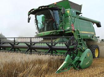 Landwirtschaft_.jpg