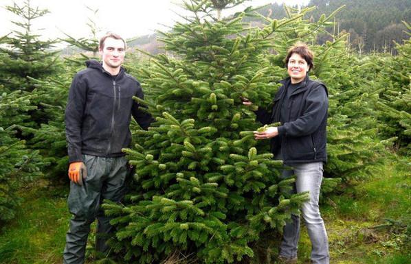 HofOevermann_Weihnachtsmarkt_01.jpg