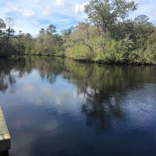 Sopchoppy River, FL