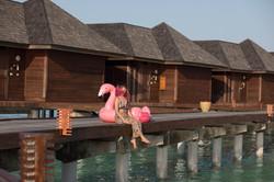 Resort time with flamingo floaties