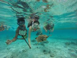 Sea turtle selfies