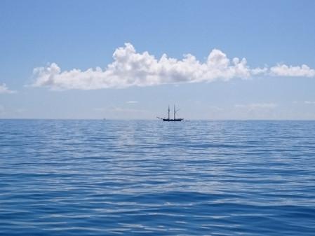 """Blue Ocean"" Leads"