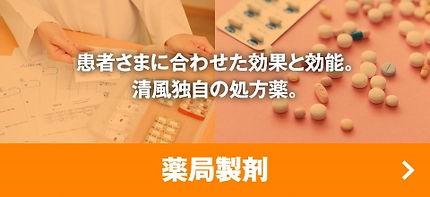 yakkyoku-seizai (1).jpg