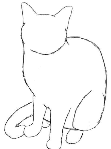 2 зад зарисовка кота1.jpg