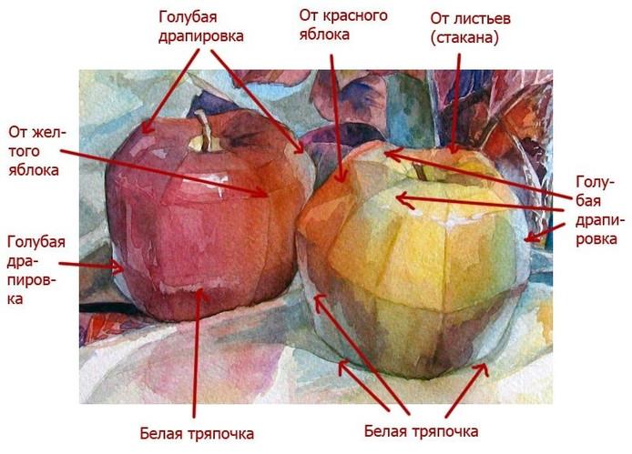 Пример, рефлексы.jpg