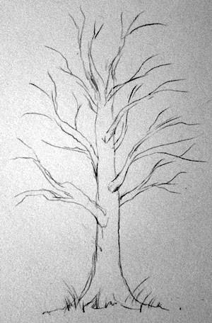 Рисование дерева. 1 этап..jpg