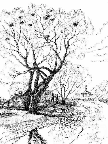 Весенний пейзаж. бумага, карандаш..webp