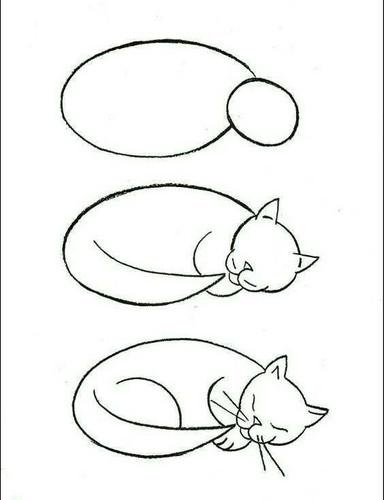2 зад. кот.jpg