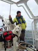 With husky dog KAYAK.jpg