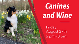 Canines and Wine Banner.png