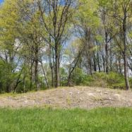 North Mound cleared.jpg