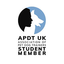 APDT Student Logo - 2020[11] .jpg