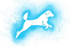 Jumping-dog-blue.png