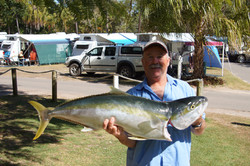 Glen Kingfish