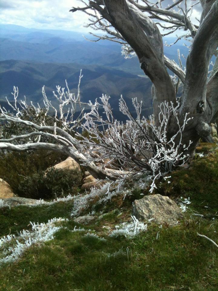Winter Mountains.jpg