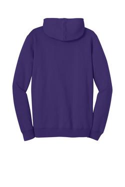 dt810-purple-1