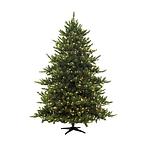 חג המולד וראש השנה הנוצרית