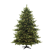 christmas tree festive hot tubs Rotherham Hot Tub Hire cheap low cost hire a hot tub rotherham sheffield barnsley doncaster wath brampton goldthorpe wombwell south yorkshire leeds huddersfield doncaster wakefield rawmarsh rotherham party hot tub jacuzzi eazy hot tubs rotospa orbis finance pay monthly