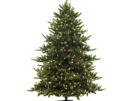 The Story of the Christmas Tree - Die Geschichte des Weihnachtsbaumes
