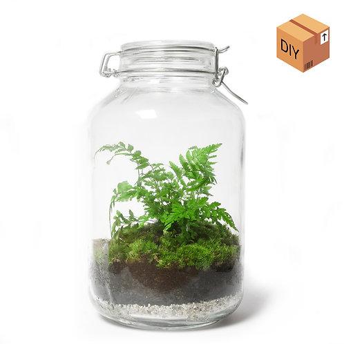DIY Kit - Inmaakpot - Het Eerste Terrarium