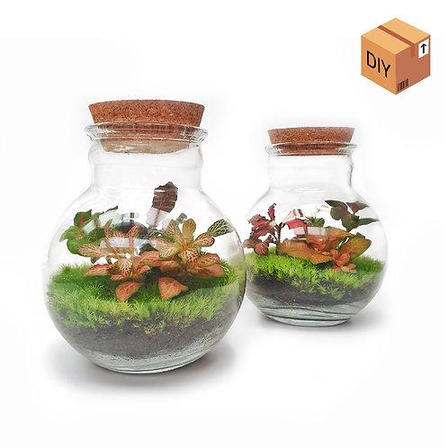 Orb Small (x2) - DIY Kit