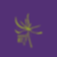 seed-2020-badges-2.png