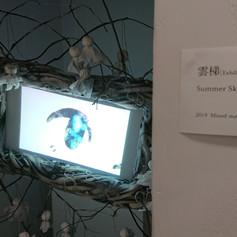 雲梯 [Exhibition Ver.]