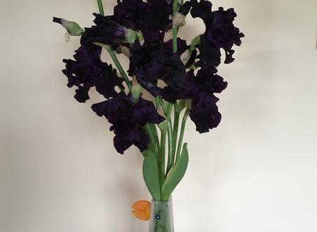 Iris ink