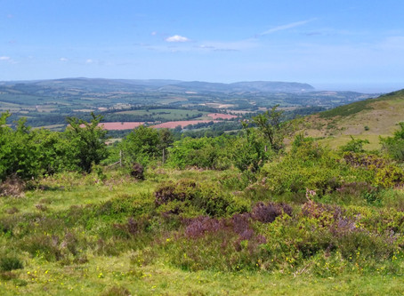 Bluesky Laser Maps Quantock Hills to Reveal Archaeological Past