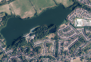 Bluesky National Tree Map Shows Changing Face of Sevenoaks District's Historic Tree Cover
