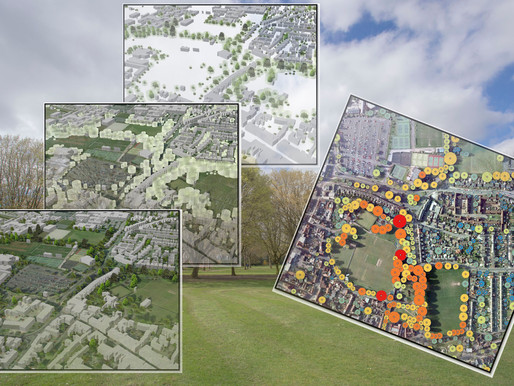 Bluesky Funds University of Leicester Study into use of LiDAR for Detailed Tree Analysis