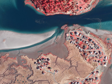 Boston University Uses Bluesky Aerial Photomaps to Research Climate Change