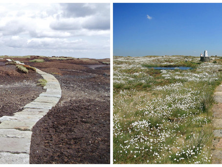 Bluesky Aerial Photos Help South Pennines Moor Conservation