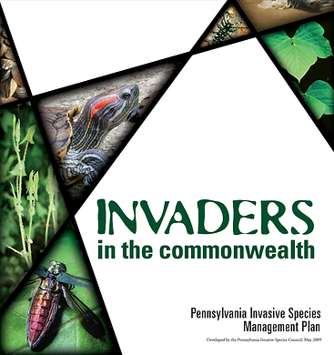 Pennsylvania iMapInvasives, invaders in the commonwealth, publication, state of pennsylvaina, invasive species management plan