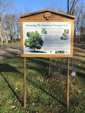 Signage provided by the American Chestnut Foundation