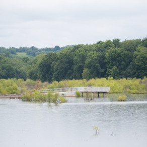 Preserving the Watershed of Glade Run Lake with Conservation Easements