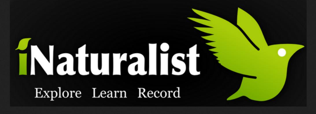 iNaturalist, iMapInvasives project, invasive species findings