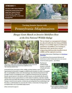 Pennsylvania iMapInvasives newsletter (Issue 13, Fall 2019)