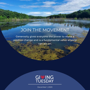 December 1st is Giving Tuesday! Here's Ways to Give to the Glade Run Lake Conservancy