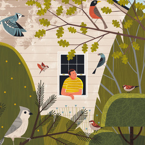 7 Tips for Watching Birds During the Spring Lockdown