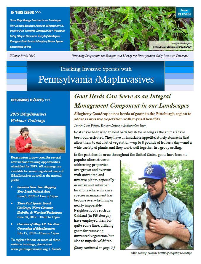 Pennsylvania iMapInvasives newsletter (Issue 11, Winter 2018/2019)