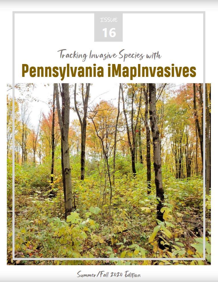Pennsylvania iMapInvasives newsletter (Issue 16, Summer/Fall 2020)