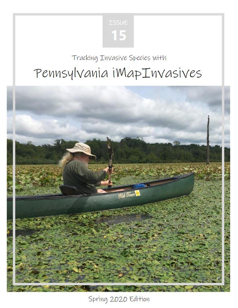 Pennsylvania iMapInvasives newsletter (Issue 15, Spring 2020)